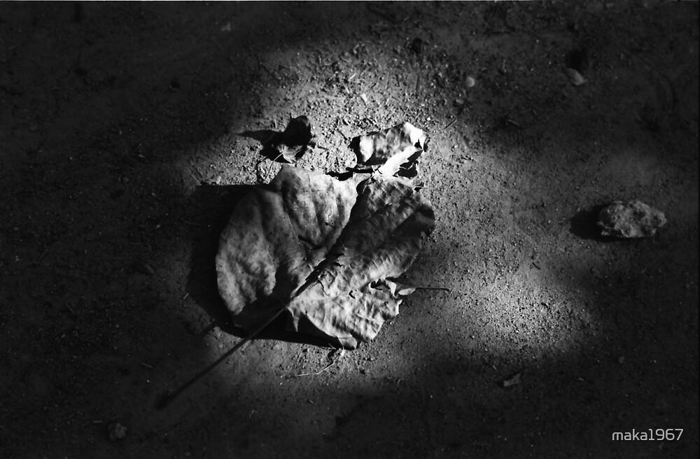 Last Autumn by maka1967