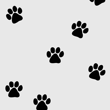 Puppy / Kitten Paws by -monkey-
