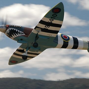 Sharkmouth Spitfire @ Festival Of Flight 2008 by muz2142