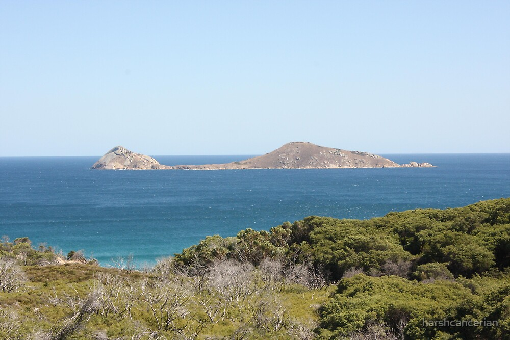The Island by harshcancerian