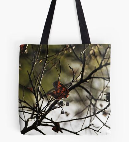 Still Hanging-Winter Series- Tote Bag