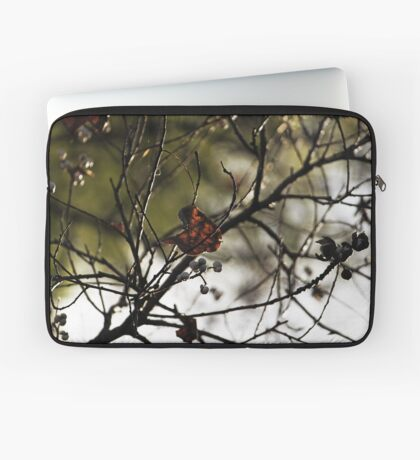 Still Hanging-Winter Series- Laptoptasche