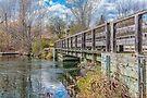 The bridge by PhotosByHealy