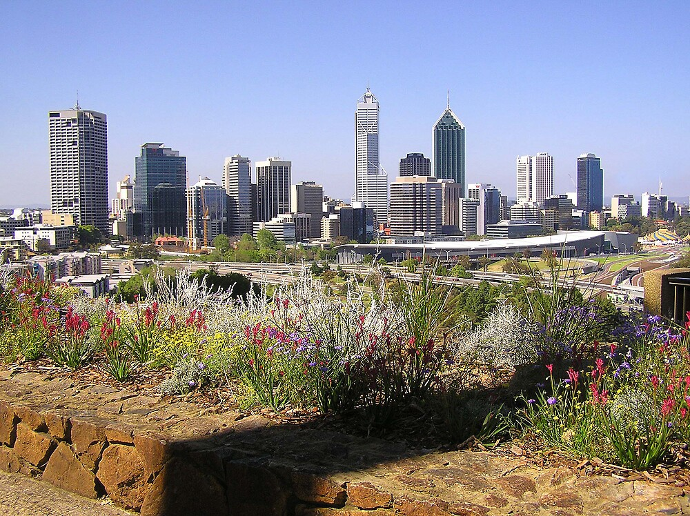 Perth from Kings Park during spring by georgieboy98