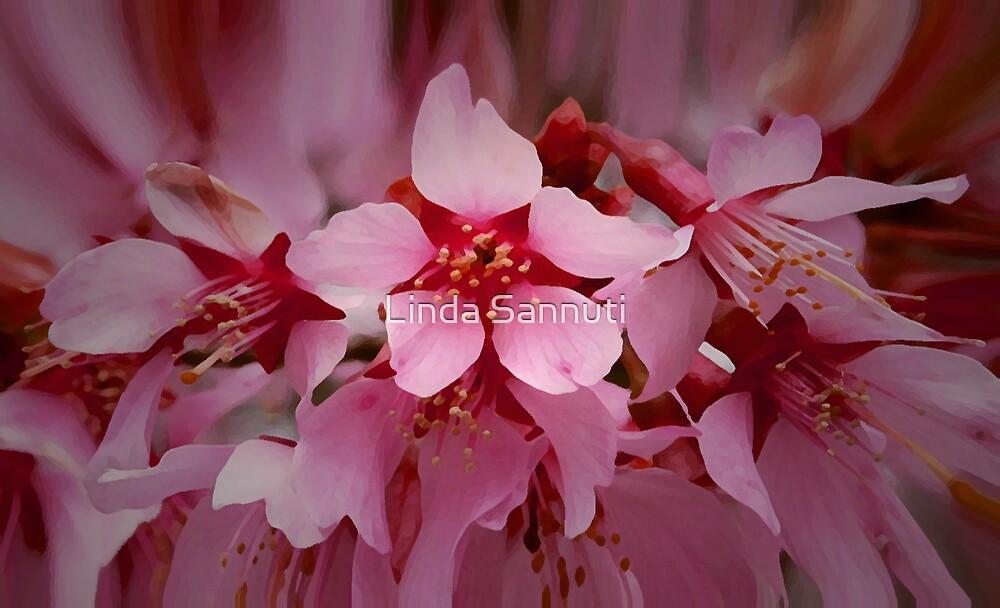 spring tree by Linda Sannuti