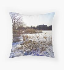 A Day Ends Throw Pillow