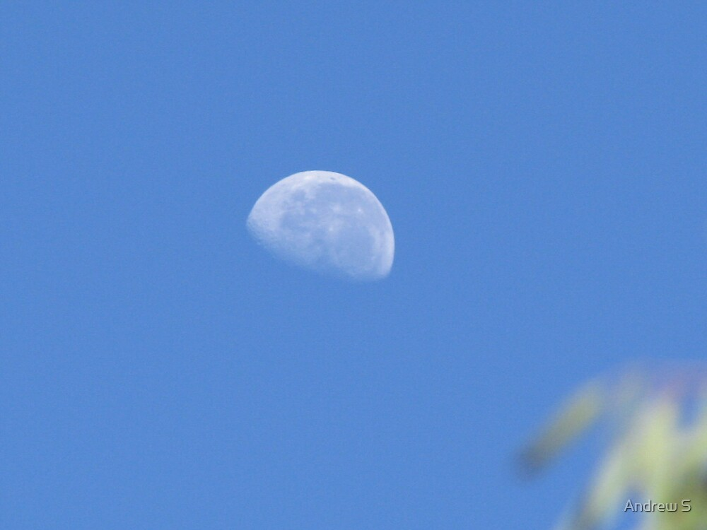 Daytime Moon by Andrew S