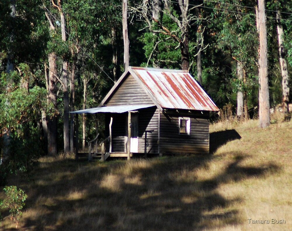 The shack, Noojee by Tamara Bush