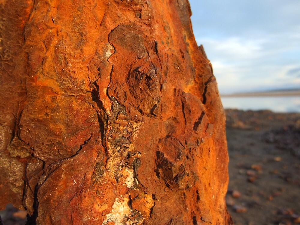 Rust at dusk by Linda Sass