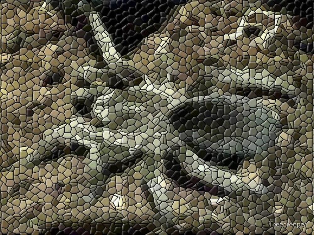 Spidie Mosaic by Treecreeper