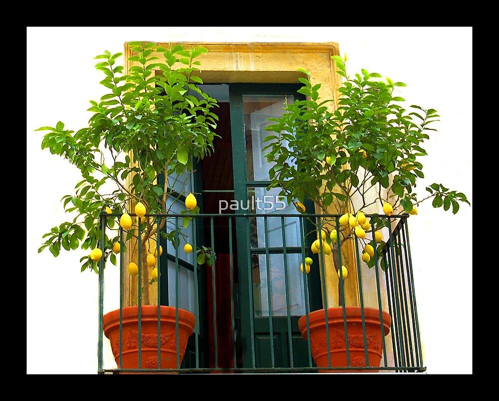 Lemon Trees by pault55