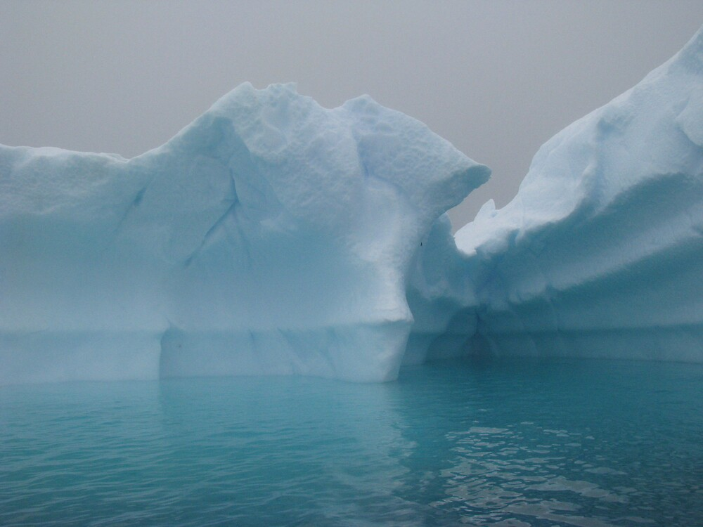 Ice Berg I by Alice Chai