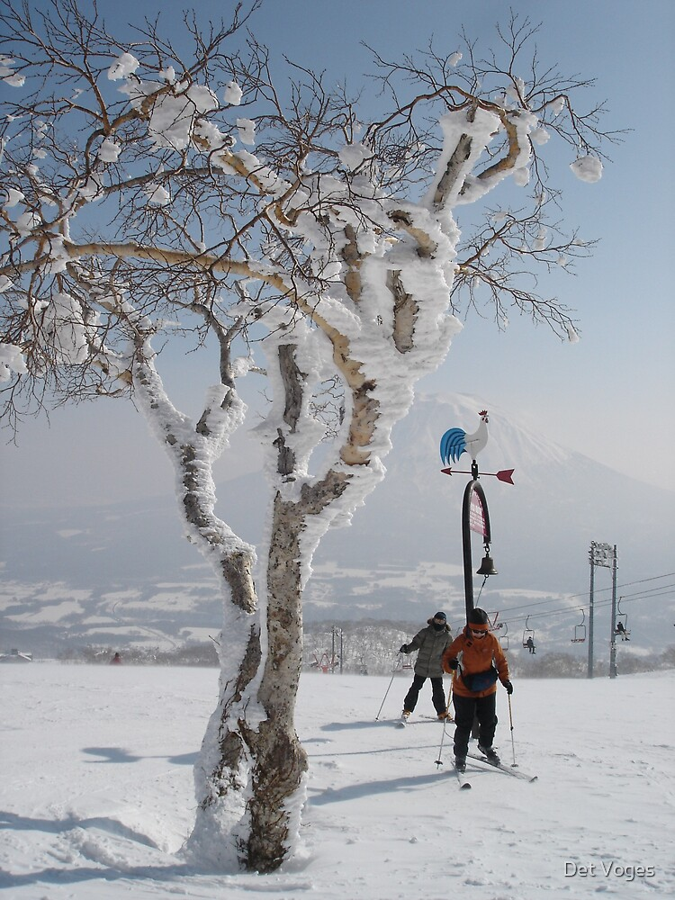 Elm and skiiers near 1000m hut by Det Voges