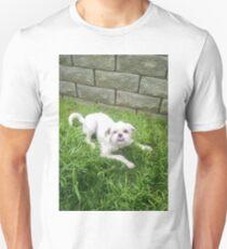 Baby Falcor the Dragon Unisex T-Shirt