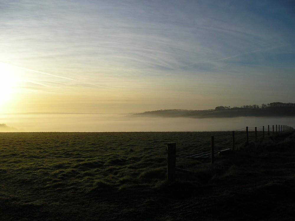 Dawn Fence Line by Stronsy