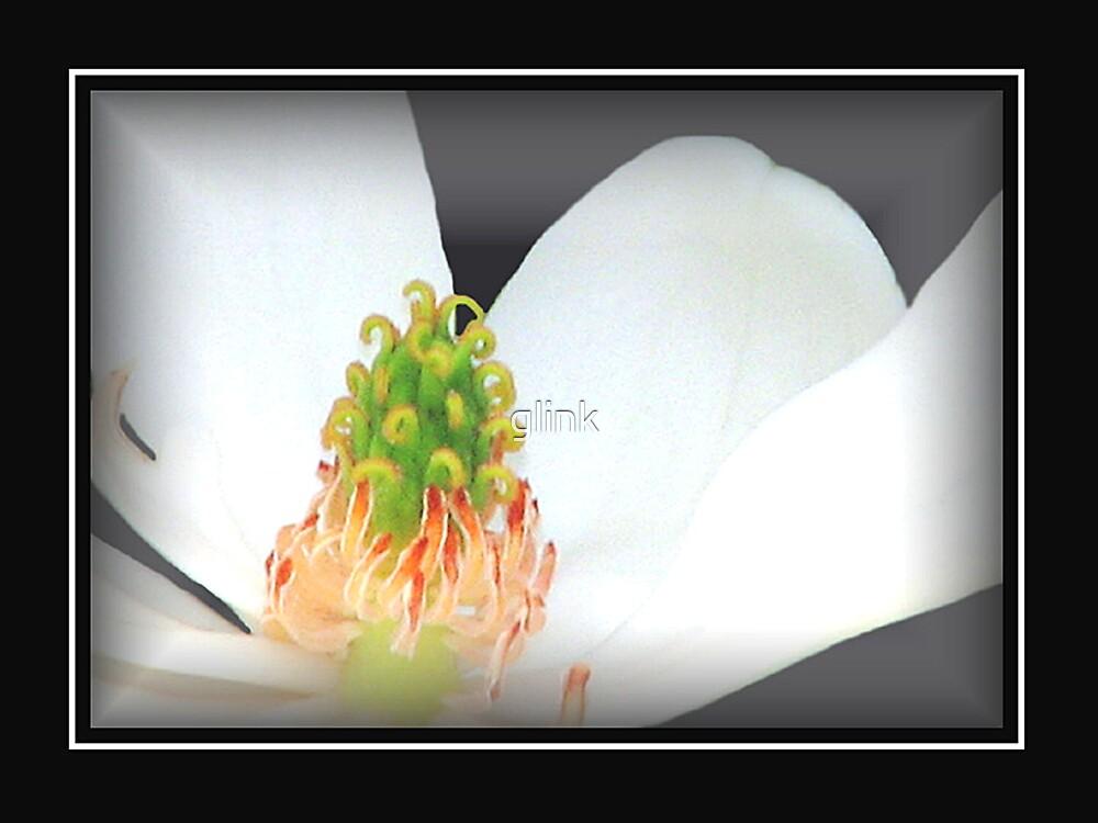 Flowering by glink