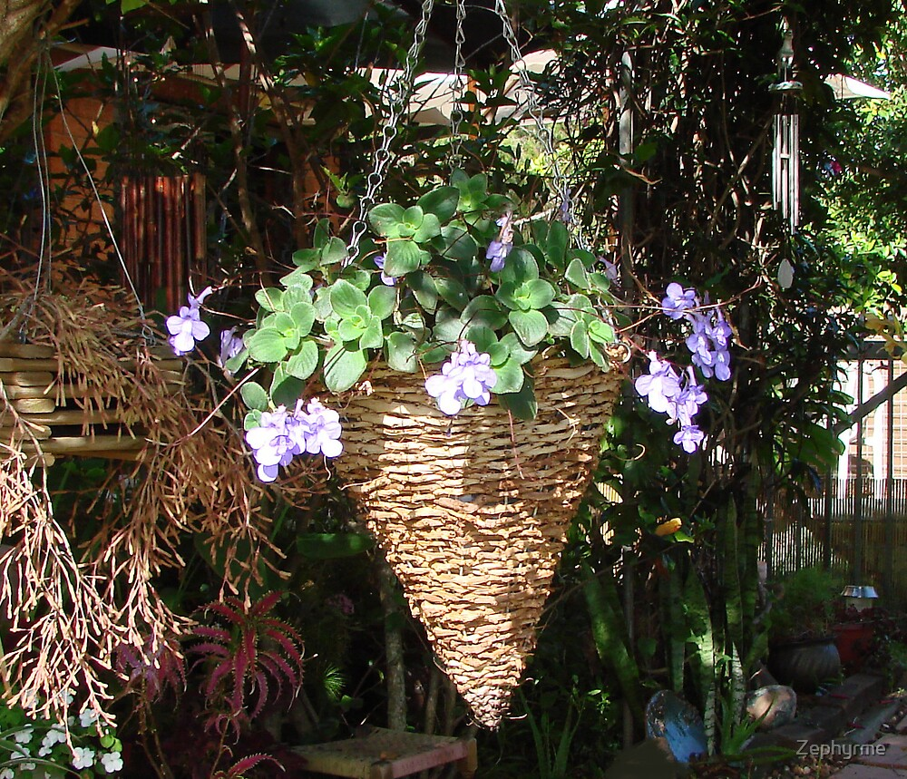 Hanging Baskets by Zephyrme