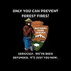 Only You Can Prevent Forest Fires by cmcconnell2771
