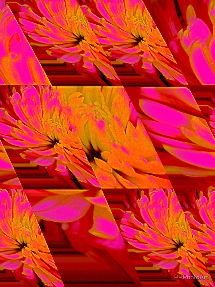 vibrant petals by PPPhotoArt