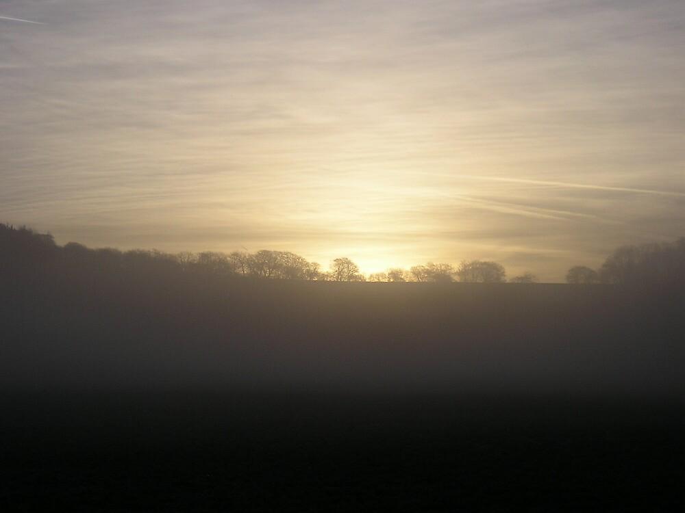 Dawn Light by Stronsy