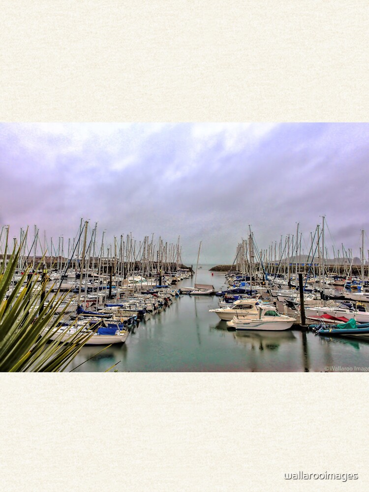 Howth Harbour by wallarooimages