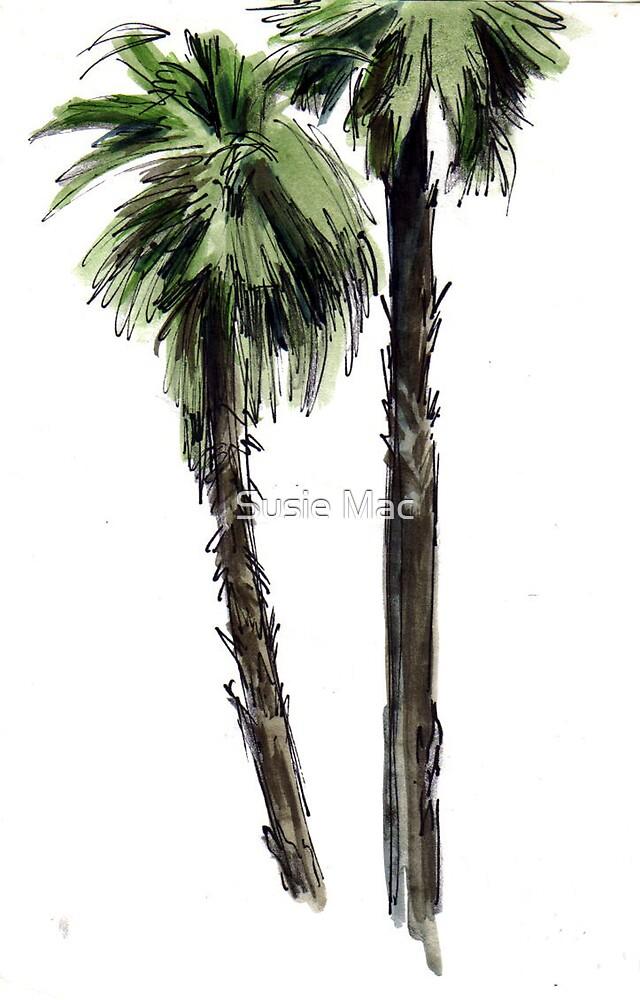 Florida palms by Susie Mac