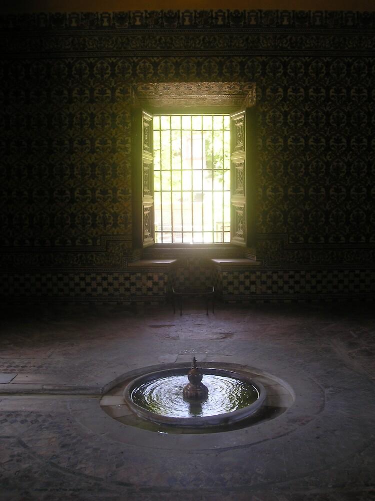 Window by Stronsy