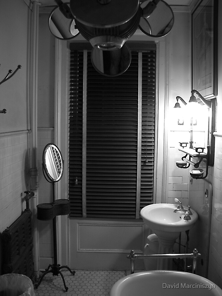 A Bathroom In The Guest House by David Marciniszyn