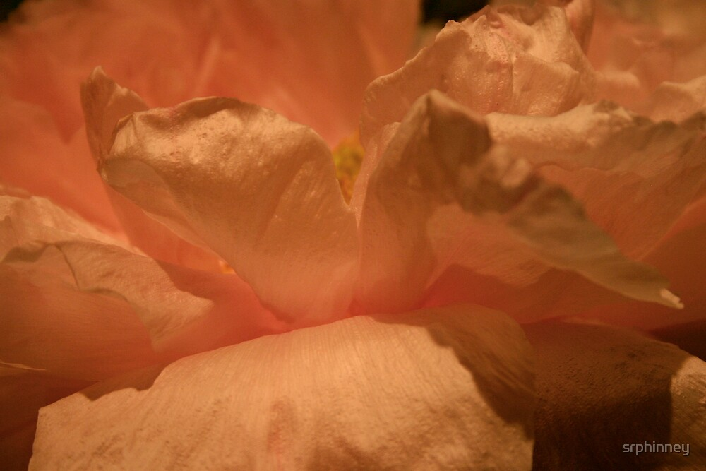 Flowing Peony by srphinney
