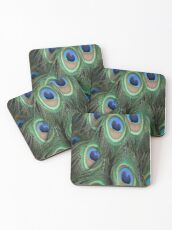 Peacock Feathers (pattern) Coasters