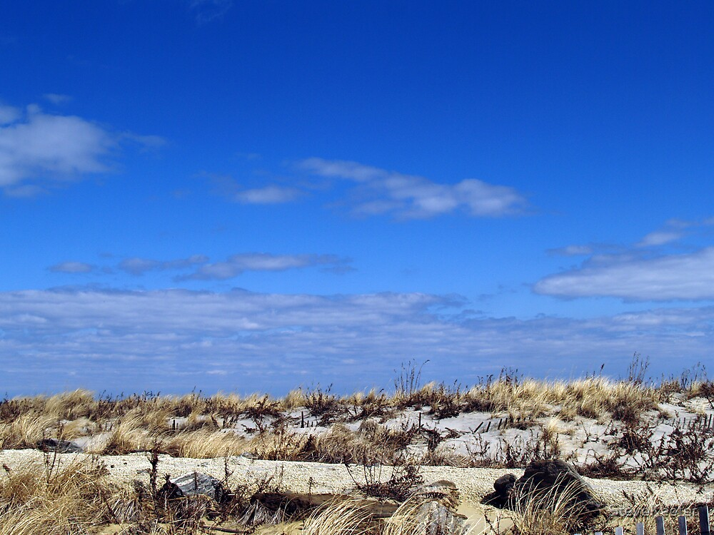 Sand and Sky by SteveKeefer