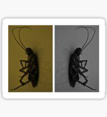 Cockroach..!! Sticker
