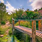 Little Wooden Bridge Over The Sella  by Ralph Goldsmith