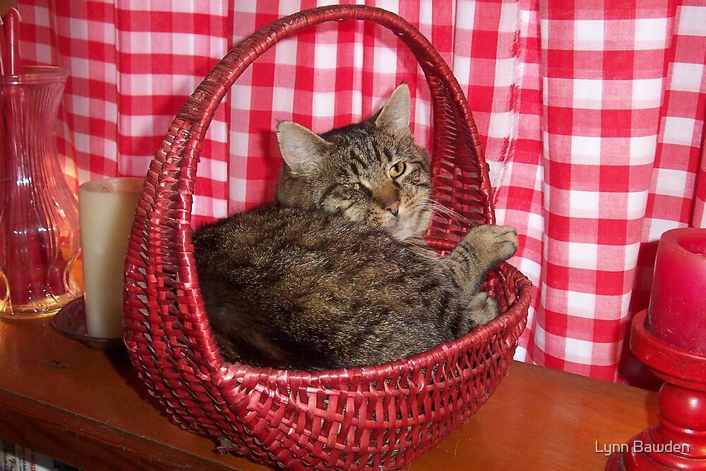 Cat In A Basket by Lynn Bawden