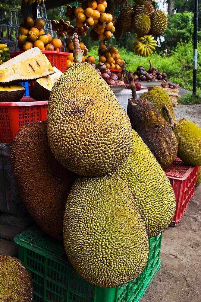 Jack Fruit by Matt Koenig