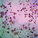 Vintage Little Flowers by VictoriaHerrera
