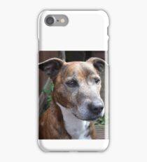 staffy iPhone Case/Skin