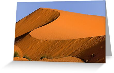 1116 Dune at Sunrise by Hans Kawitzki