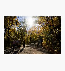 Mount Royal, Montreal Photographic Print
