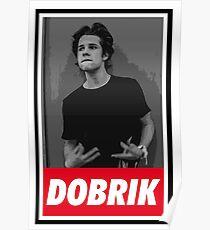 DAVID DOBRIK Poster