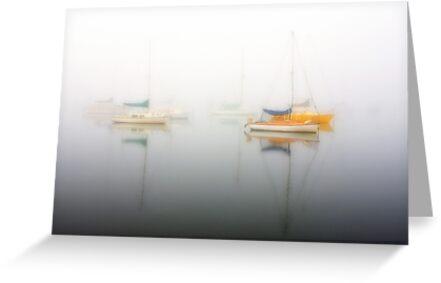 1163 Hiding in Fog by Hans Kawitzki