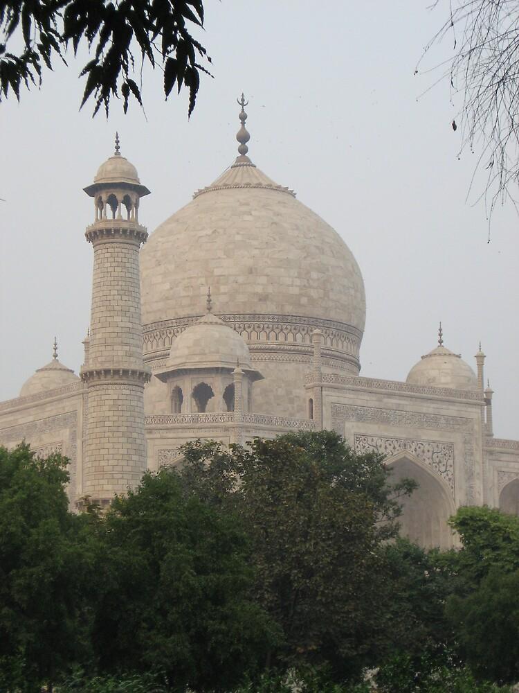 Taj Mahal III - Agra, India by Alice Chai