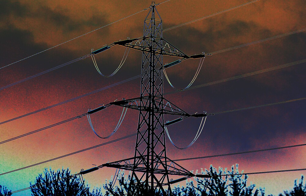 salvia pylon  by cool3water