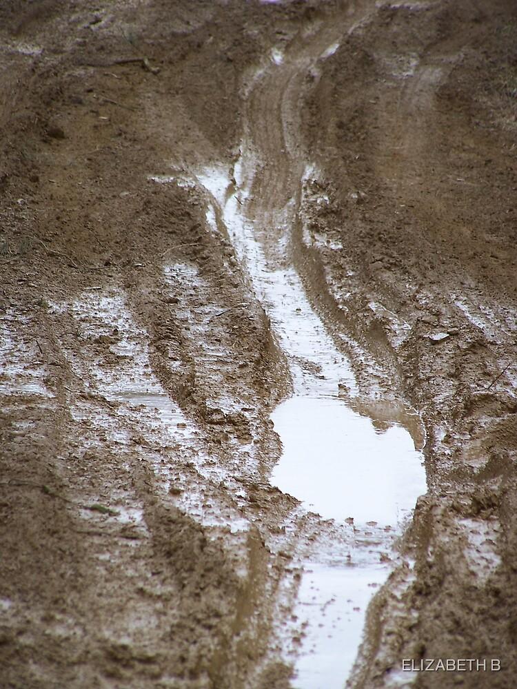 wet road by ELIZABETH B