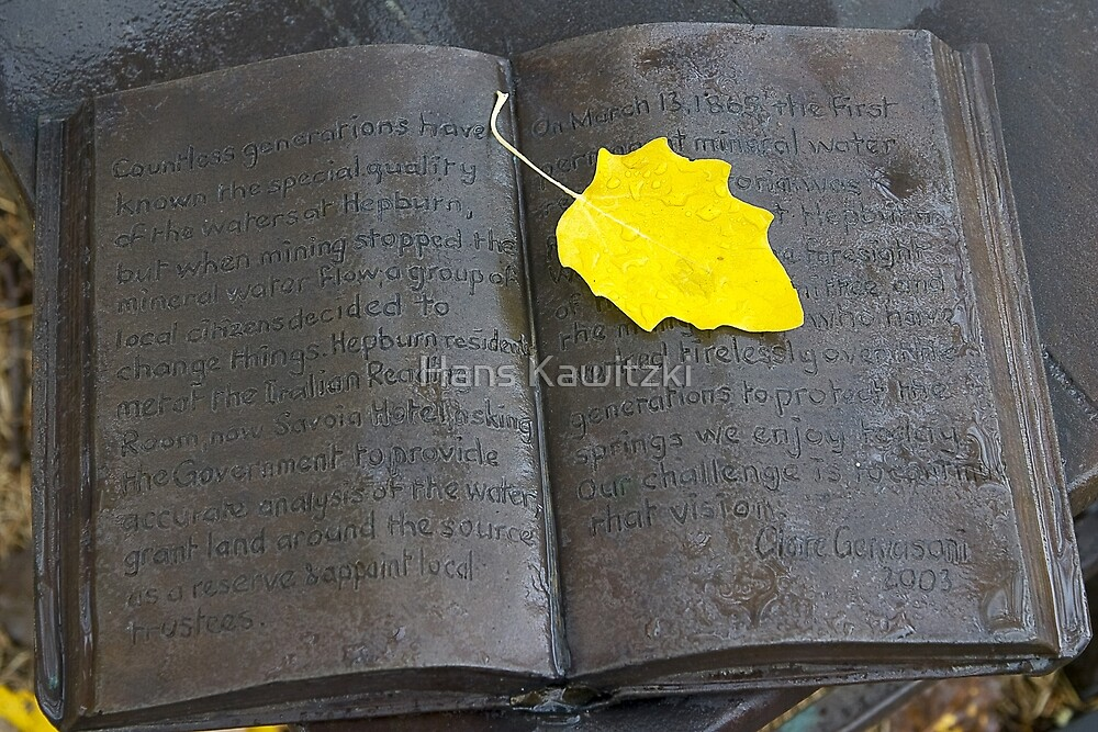 1175 The Book by Hans Kawitzki