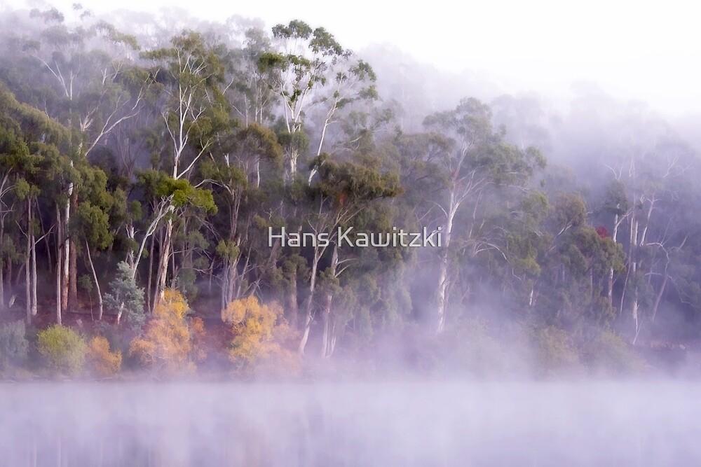 1176 Rising fog  by Hans Kawitzki