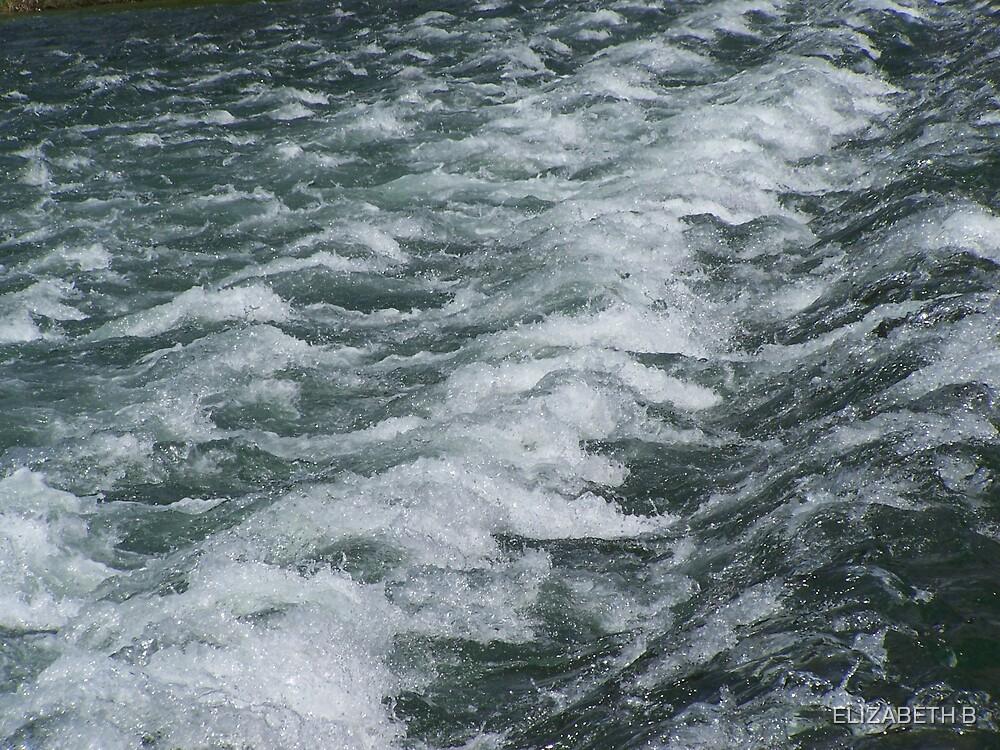 TENN WATERS by ELIZABETH B