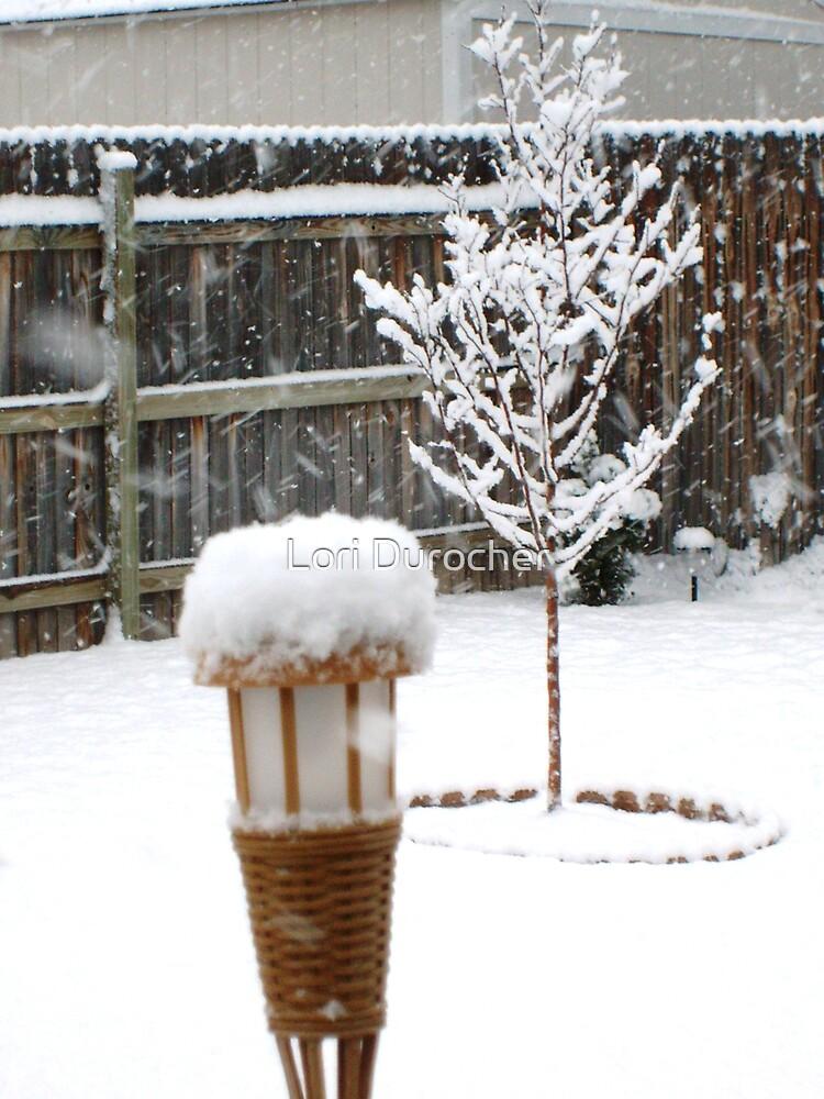 Hopefully last snow storm by Lori Durocher