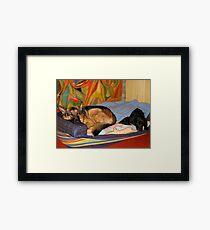 DOGS LIVING TOGETHER Framed Print