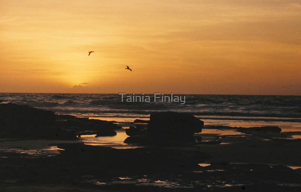 Cable Sunset by Tainia Finlay